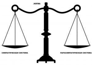 vector antique scales of justice